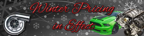 Winter Pricing Banner